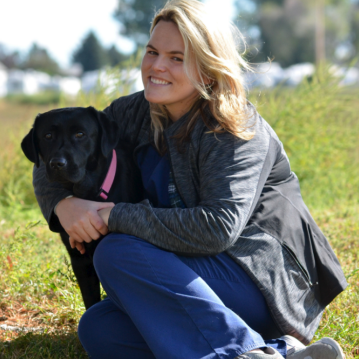 Katie Hecke, DVM </br>Veterinarian photo