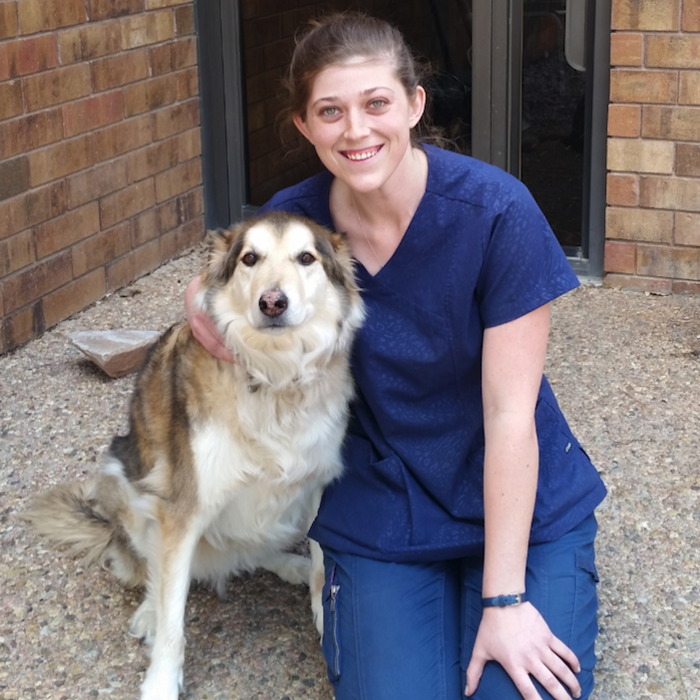 Ashley Yost  </br>Veterinary Assistant photo